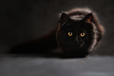colore nero significato